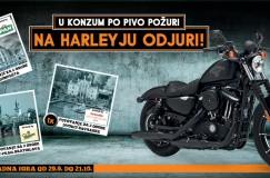 konzum_harley